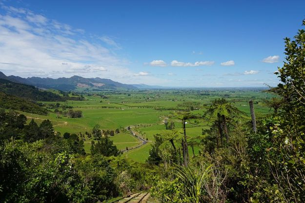 DSC00392_Waiorongomai