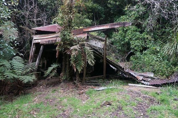 DSC00494_Waiorongomai