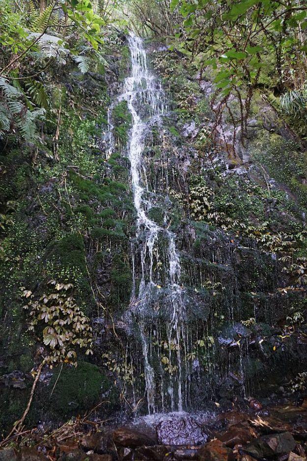 DSC00562_Waiorongomai
