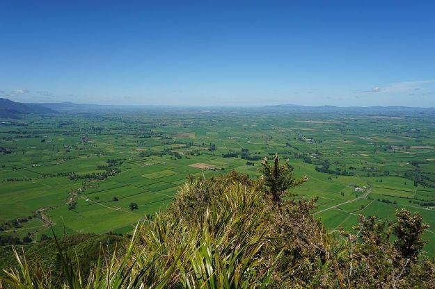 DSC00577_Waiorongomai