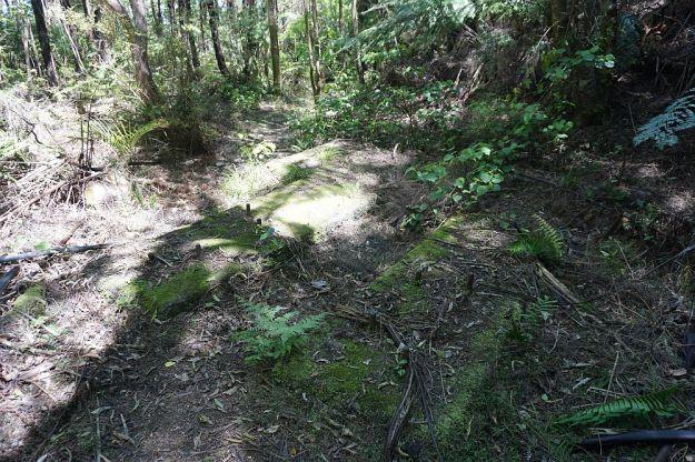 DSC00587_Waiorongomai