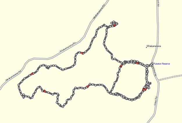 GPS_PuketokiReserve20141225