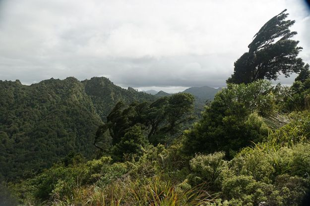DSC01224_Tuahu_SentinelRock