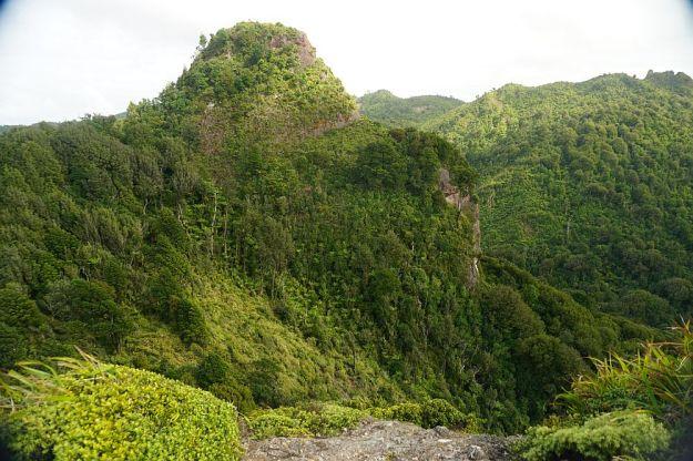 DSC01236_Tuahu_SentinelRock