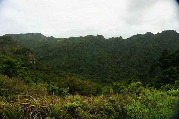 DSC01239_Tuahu_SentinelRock