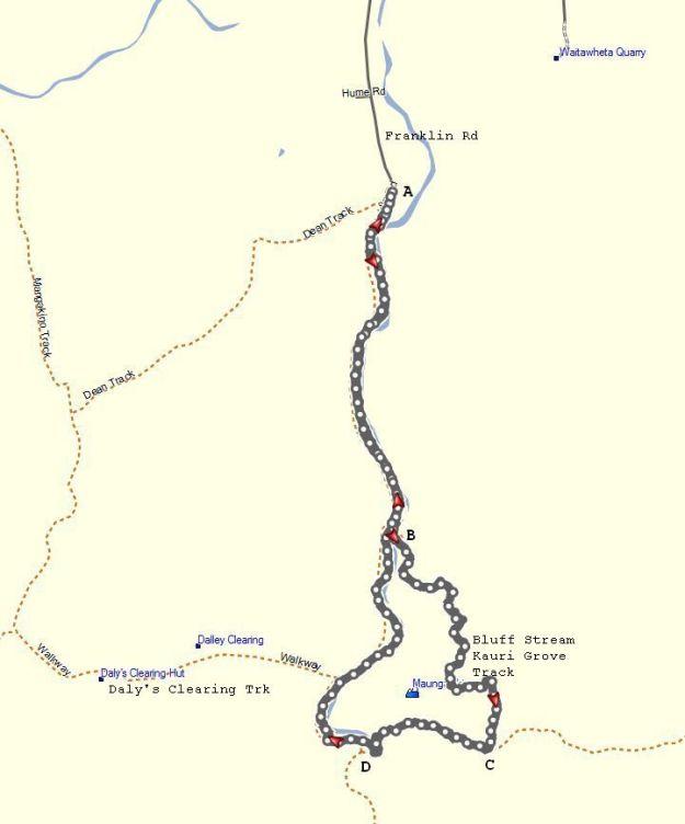 GPS_BluffStreamKauriLoop