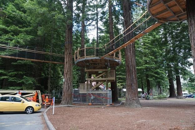 DSC02855_RedwoodsPohaturoa