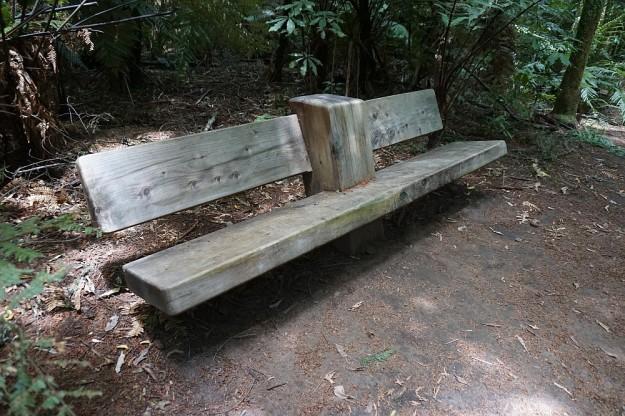 DSC02926_RedwoodsQuarry