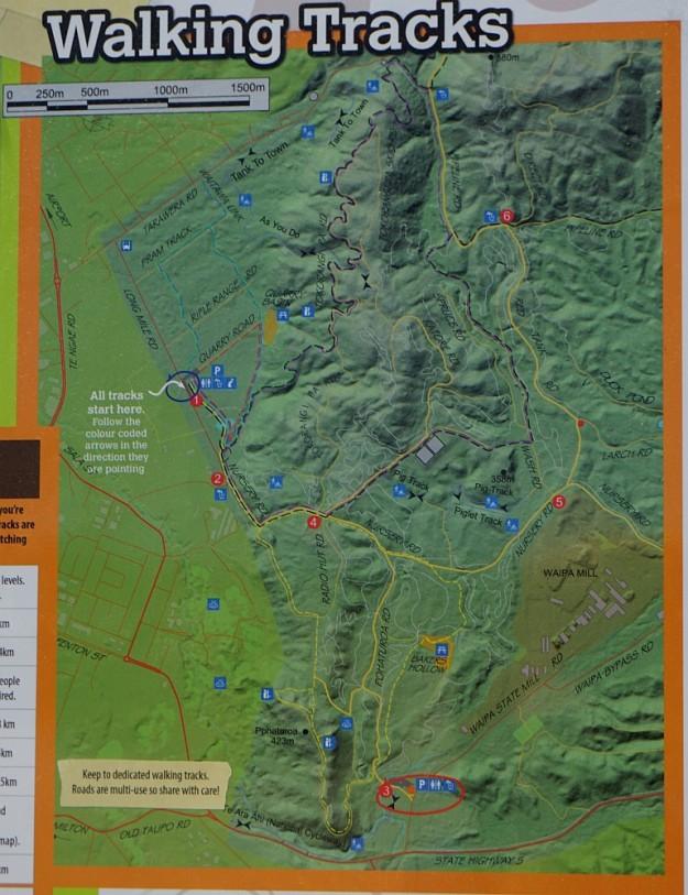 DSC02995_RedwoodsTokorangiPa
