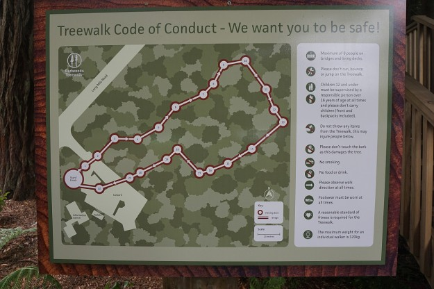 DSC03288_treewalk