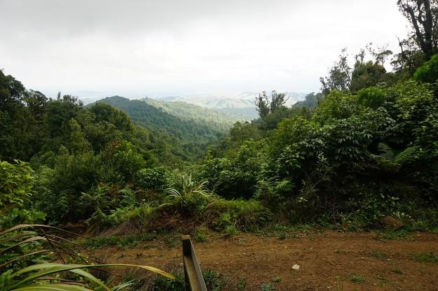 DSC03694_MaungatautariNorth