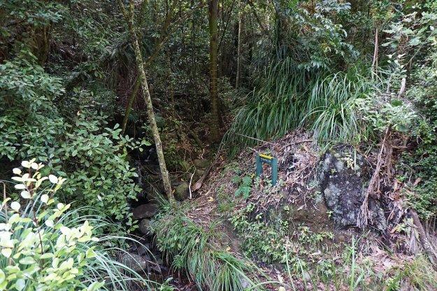 DSC03952_WaitawhetaTramway