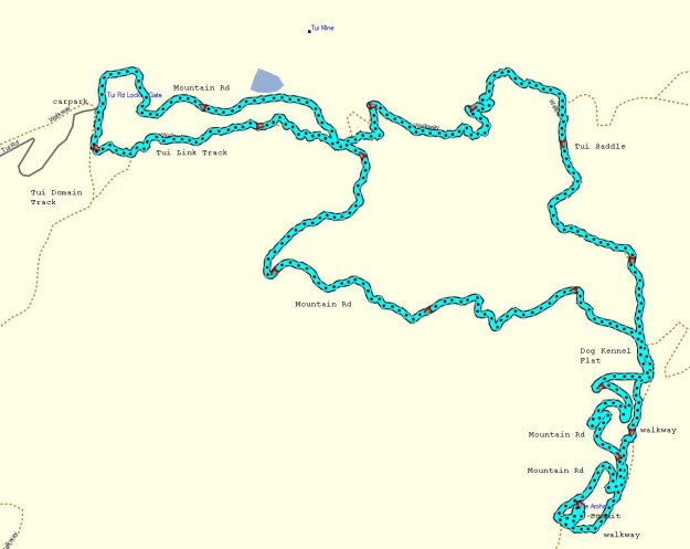 GPS_MtTeAroha_Tui