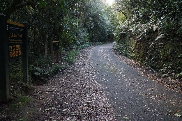DSC04380_MtNgongotaha