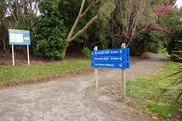 DSC03785_WaikareaoEstuary