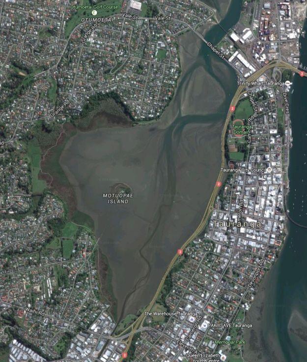 Satellite_WaikareaoEstuary