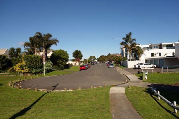 DSC03845_TaurangaHistorical_Waikareao