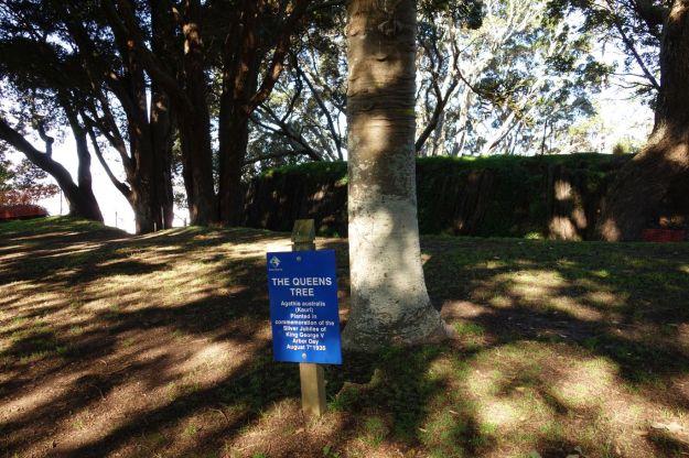 DSC03862_TaurangaHistorical_Waikareao