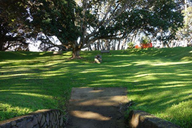 DSC03871_TaurangaHistorical_Waikareao