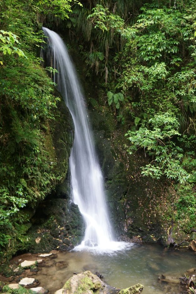 Mclaren Falls Park Lakeside And Waterfall Tracks
