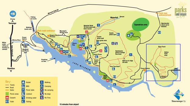 map_mclarenfalls_rimu